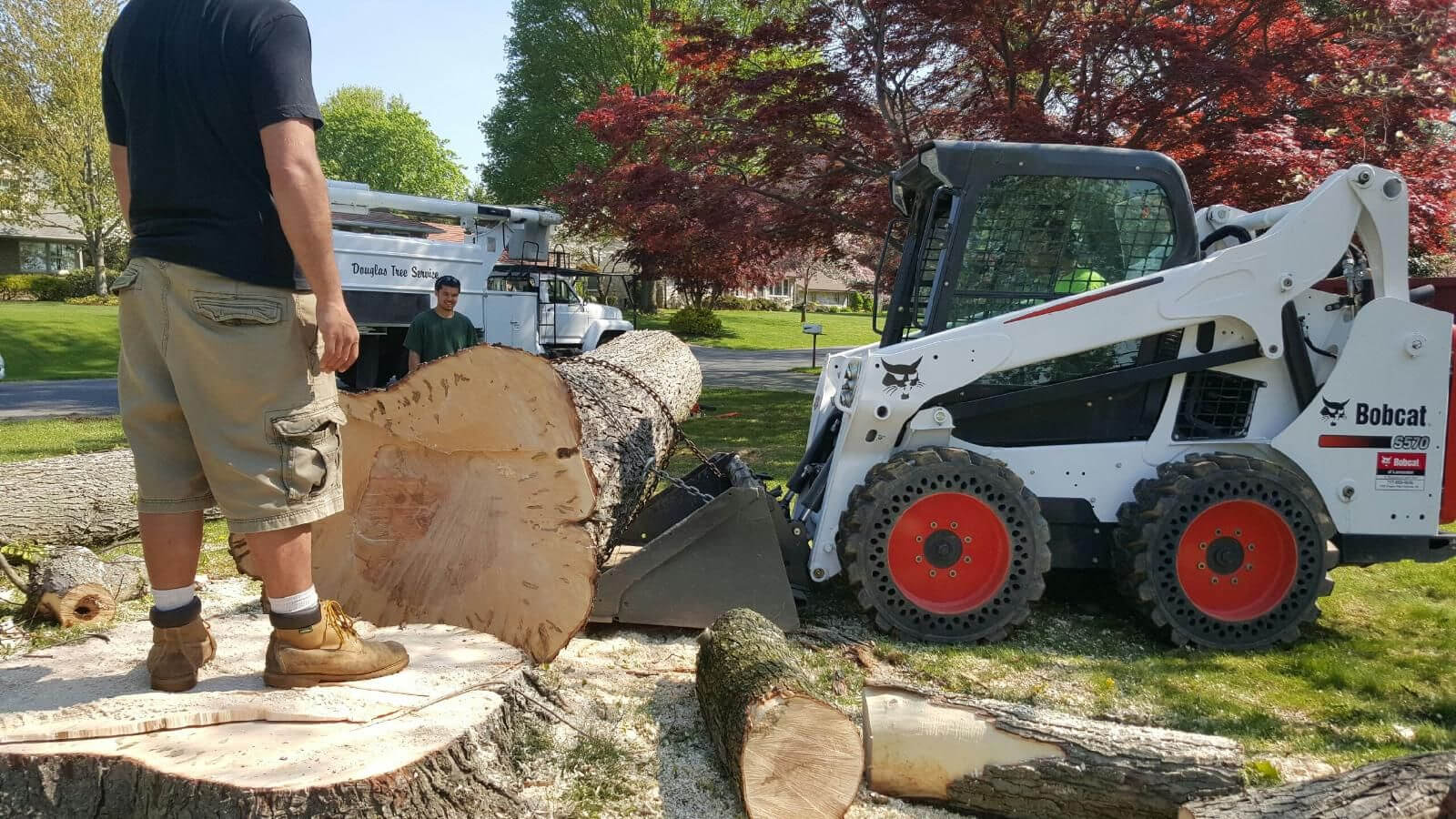Services-Pembroke Pines FL Tree Trimming and Stump Grinding Services-We Offer Tree Trimming Services, Tree Removal, Tree Pruning, Tree Cutting, Residential and Commercial Tree Trimming Services, Storm Damage, Emergency Tree Removal, Land Clearing, Tree Companies, Tree Care Service, Stump Grinding, and we're the Best Tree Trimming Company Near You Guaranteed!